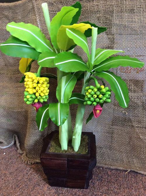 ngam-bonsai-chuoi-canh-sieu-doc-tren-thi-truong-tet-2018-4
