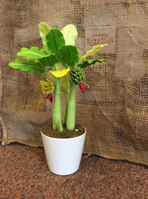 ngam-bonsai-chuoi-canh-sieu-doc-tren-thi-truong-tet-2018-6