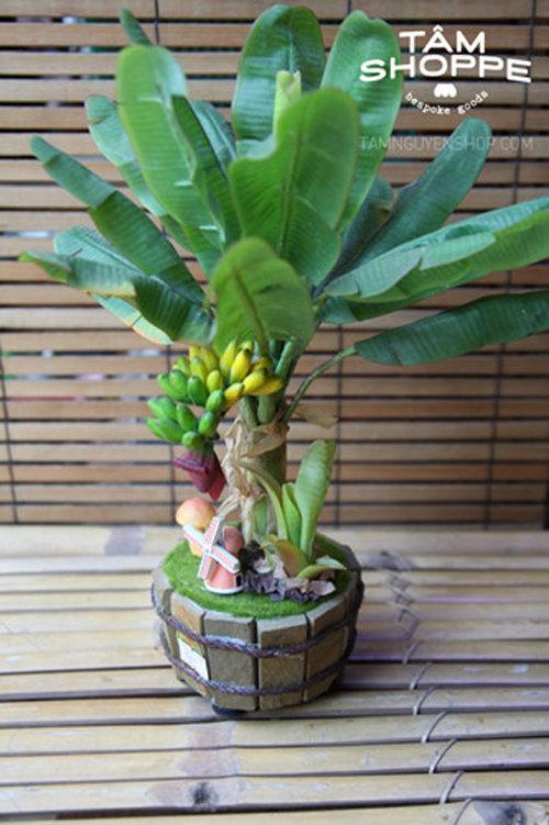 ngam-bonsai-chuoi-canh-sieu-doc-tren-thi-truong-tet-2018-7
