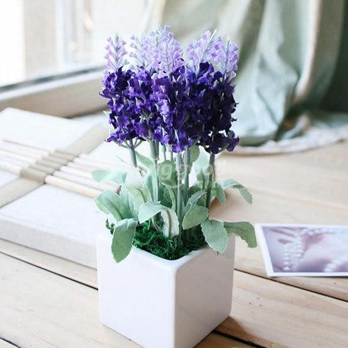 hoa-lavender-qua-dep-ma-thom-lai-duoi-duoc-muoi-toi-gi-khong-tu-trong-vai-chau-tai-nha-2
